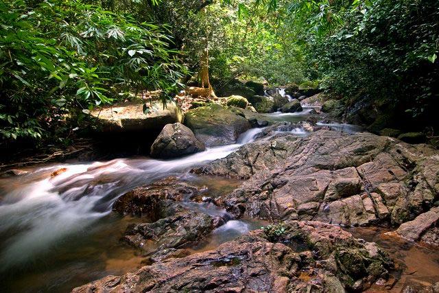 Khao-Phra-Thaeo-National-Park-Phuket