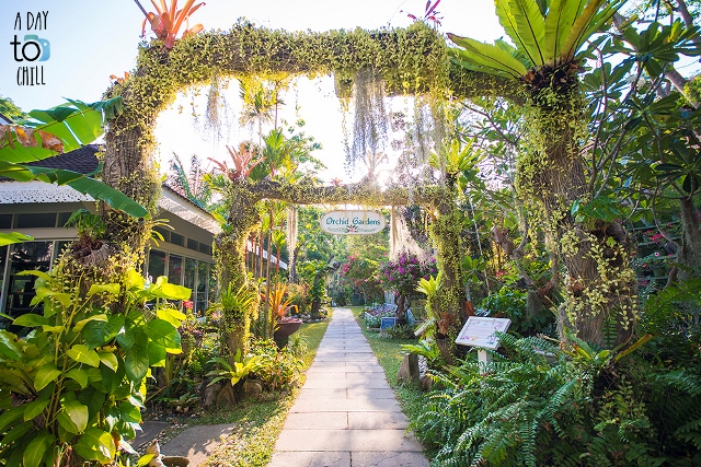 Orchid Garden by A day to chill, Karon Beach Phuket