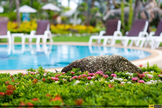 garden view, family holiday in phuket