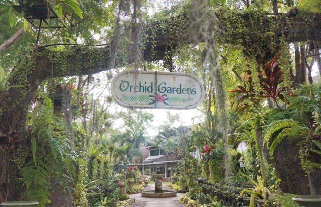 Thavorn_Palm_Beach_Resort_Phuket_Orchid_Garden