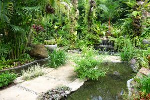 Tropical_Garden_Phuket_Thavorn_Palm_Beach_Resort