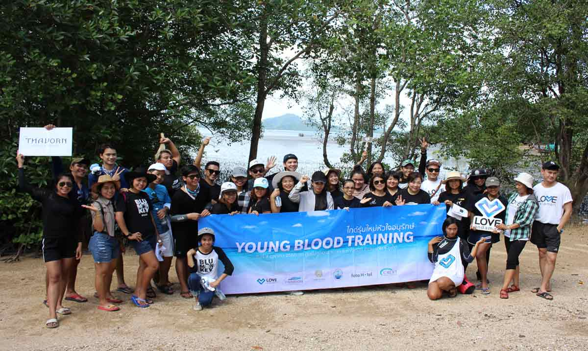 Mangrove-forest-planting
