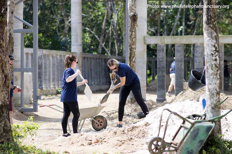 7. Phuket Elephant Sanctuary Volunteer Program