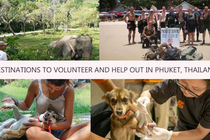 DESTINATIONS TO VOLUNTEER AND HELP OUT IN PHUKET, THAILAND
